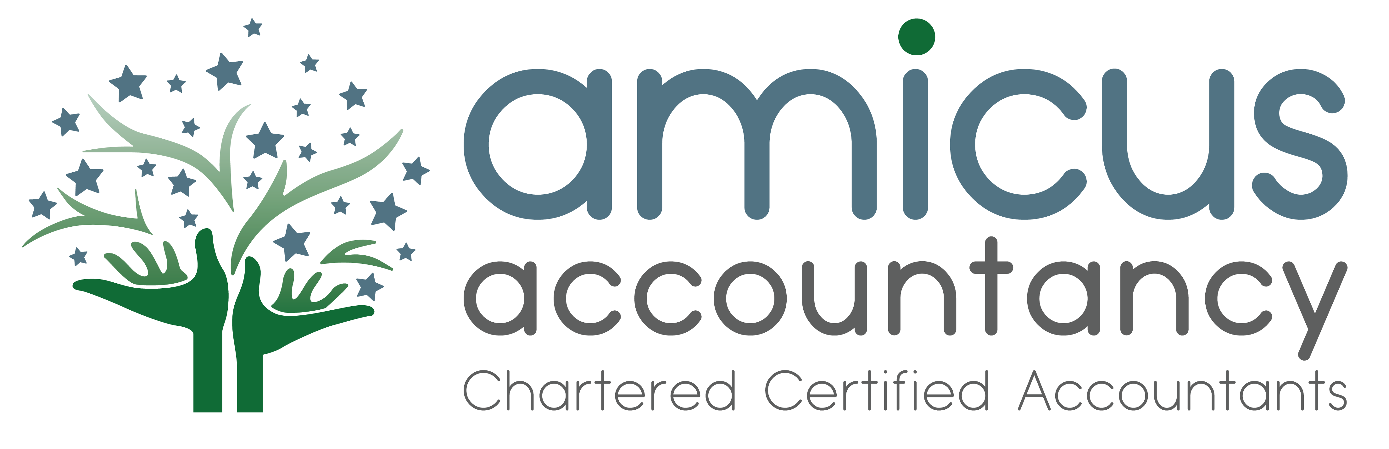 Amicus Accountancy